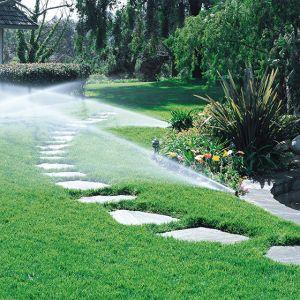 Guida Alla Scelta Del Migliore Sistema Di Irrigazione Per Il