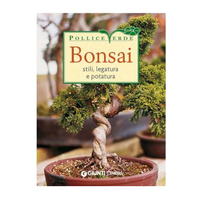 Bonsai: prezzi e offerte online