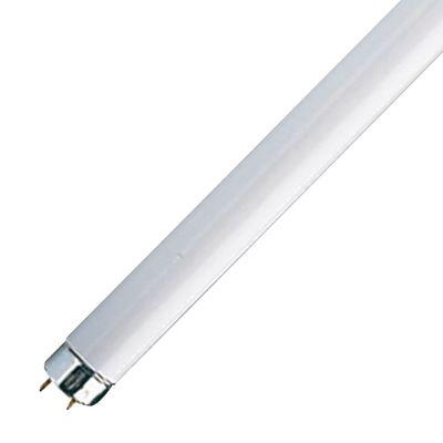 Tubo fluorescente t8 58w luce fredda prezzi e offerte online for Tubos led t8 leroy merlin