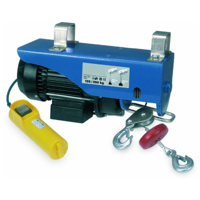 Paranco elettrico ph906 250 kg prezzi e offerte online for Scaldasalviette elettrico leroy merlin