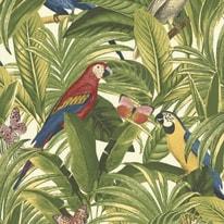 Carta da parati Giungla e pappagalli multicolor 10 m