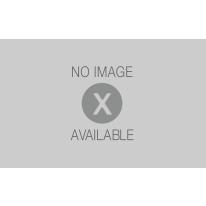 Box doccia scorrevole Primo 68-79 x 68-79, H 185 cm cristallo 4 mm granito/silver