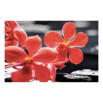 quadro su tela Red flower 75x115