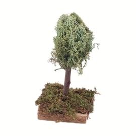 Albero con licheni 12 cm