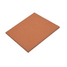 Piastrella 29,2 x 29,2 cm Cotto, spessore 1,5 cm