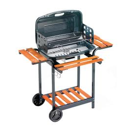 Barbecue a carbonella Apollo
