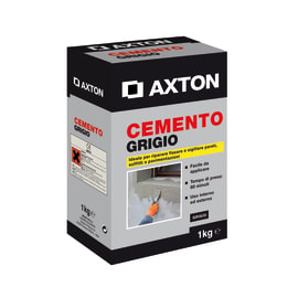 Cemento Axton grigio 1 kg
