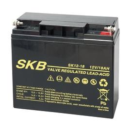 Batteria tampone al piombo per centrale