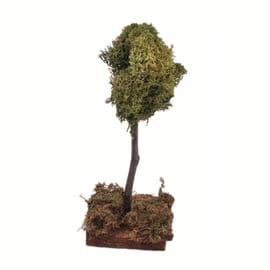 Albero con licheni 15 cm