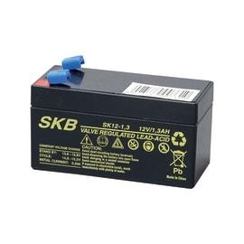 Batteria tampone al piombo per allarmi, sirene, centrali Universale