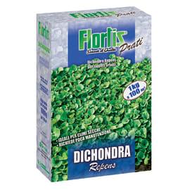 Seme per prato Dichondra repens 1 kg