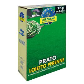 Seme per prato Loietto 1 kg