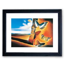 Stampa incorniciata Papillons 35 x 45 cm