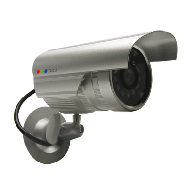 Telecamera finta 123063 prezzi e offerte online leroy merlin for Edera finta leroy merlin