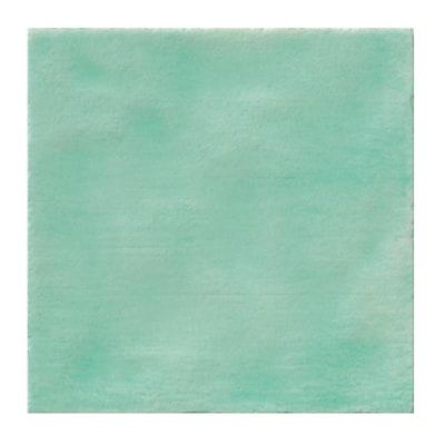Piastrella patine 15 x 15 cm verde prezzi e offerte online for Piastrelle plastica giardino leroy merlin
