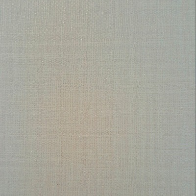 Carta da parati inspire tessile grigio e argento prezzi e for Carta parati argento