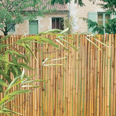 Arella Bambooflex naturale L 3 x H 1,5 m