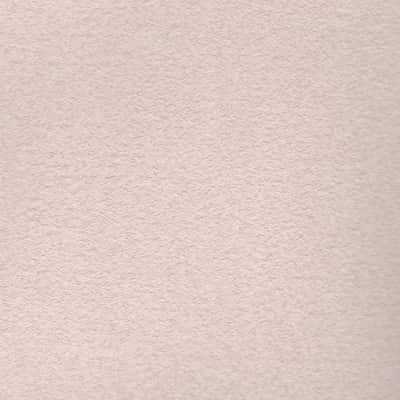 Pittura ad effetto decorativo vento di sabbia ballerina 3 for Pittura vento di sabbia