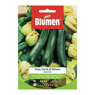 Seme per orto zucchino nano verde di milano