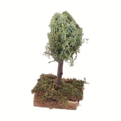 Alberi Albero di lichene x H 12 cm
