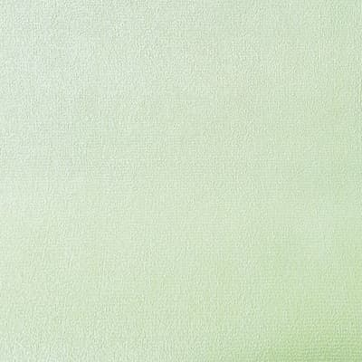 Carta da parati Bucciato verde