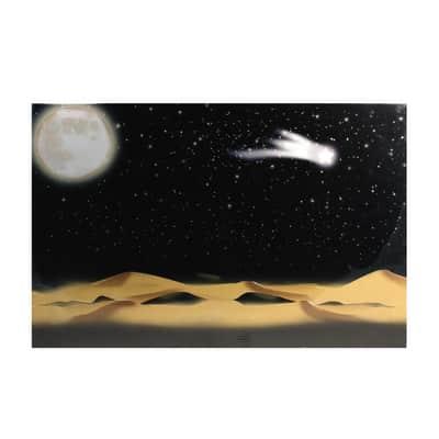 Carta sfondo deserto notturno prezzi e offerte online for Combustibile zibro prezzi e offerte