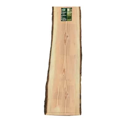 Tavola rettangolare in pino douglas grezzo 2000 x 310 x 30 mm