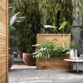 Divisori giardino prezzi e offerte online per schermi for Divisori con fioriere