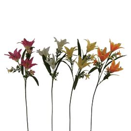 Ramo Lilium Delphinium colori assortiti